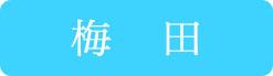 梅田 (1)